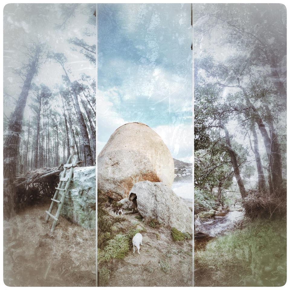 Photo Art. Nature.